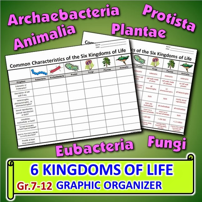 KINGDOMS OF LIFE GRAPHIC ORGANIZER