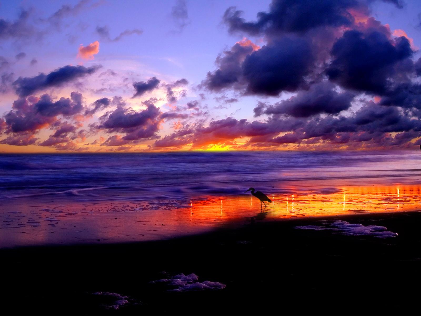 http://3.bp.blogspot.com/-EmRYJ465Nhs/TlADGMBVQyI/AAAAAAAAACw/wtqUqgV3xSg/s1600/nature_0003.jpg