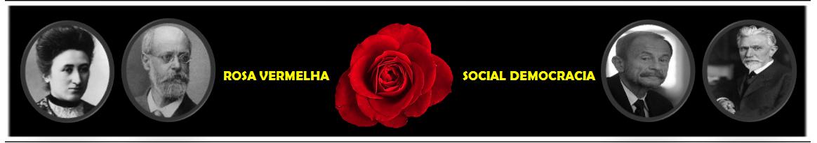Rosa Vermelha - Social Democracia
