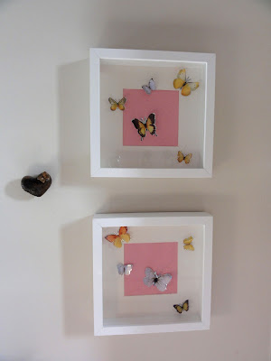 butterflies in frame