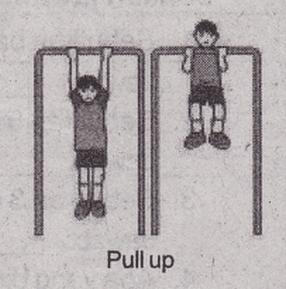 Cara Melatih Kekuatan Daya Tahan Otot Tangan