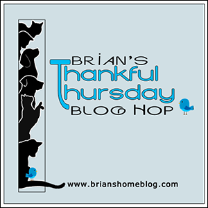 Brian's Thankful Thursday Blog Hop