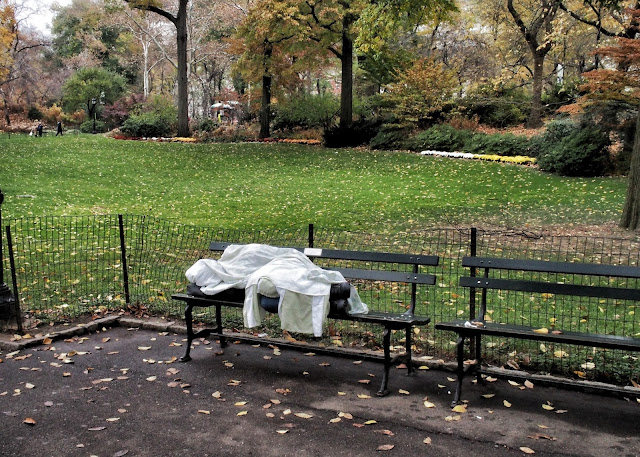 Shrouded, Central Park, NYC, 2013