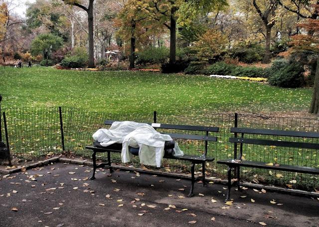 Shrouded, Central Park, NYC, 2013