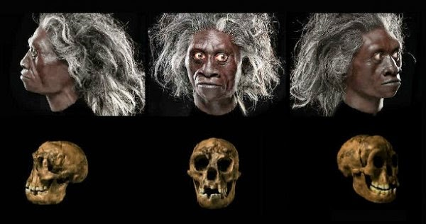 Huge Scientific Discovery: 'Hobbits' Existed as a Separate Humanoid Species