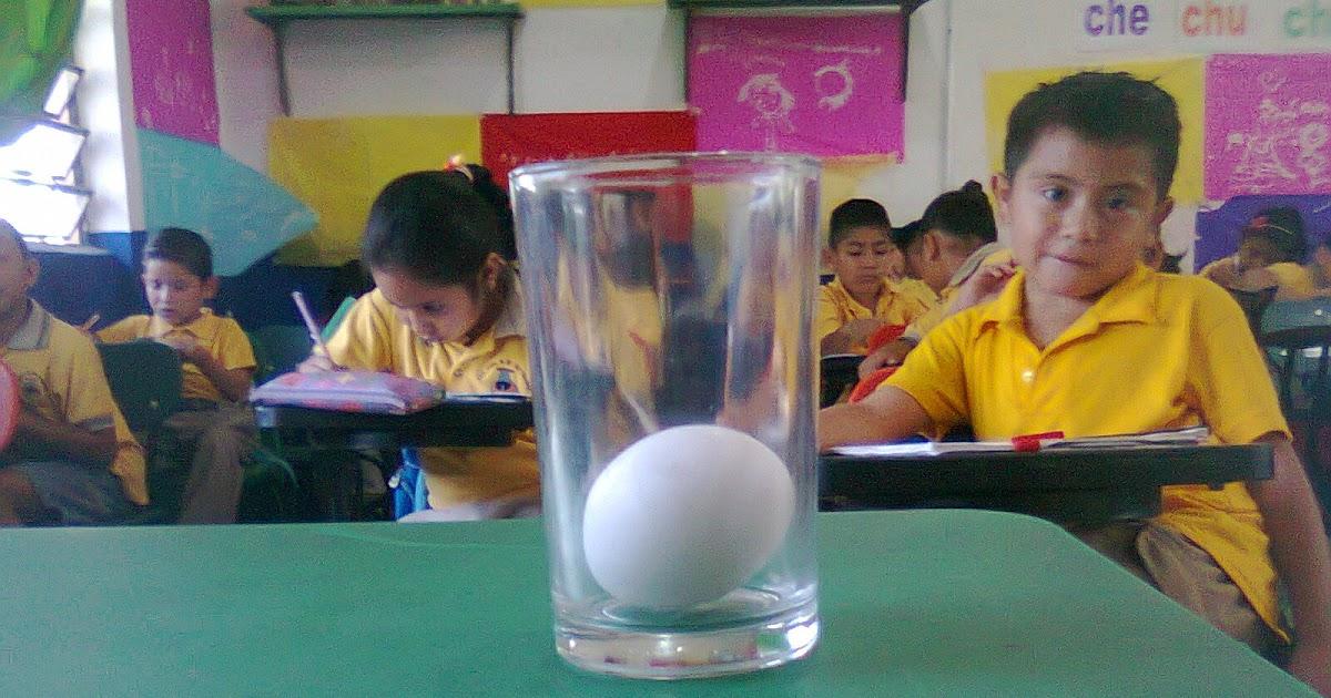 4 decenas descubriendo la ciencia el huevo de pl stico for Huevo en el ano