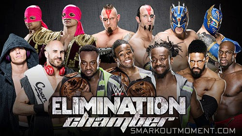 WWE Elimination Chamber 2015 Tag Team Title Match