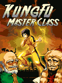 game-kung-fu-master-class