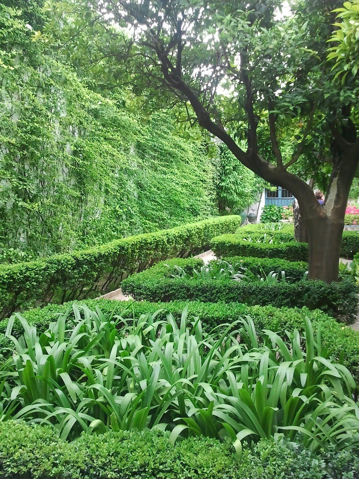El jard n los jardines del palacio de viana de c rdoba - Jardines cordoba ...