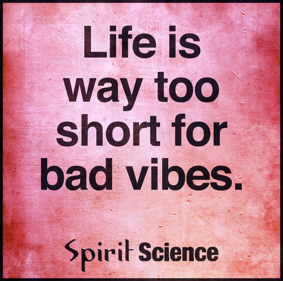 Life Is Way Too Short For Bad Vibes Spirit Science Quotes