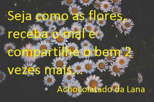Seja como as flores...