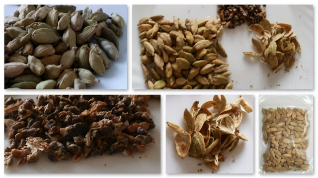 Cardamom Полезные, лечебные свойства кардамон