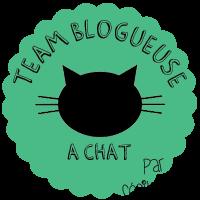 Je suis une blogueuse à Chat !