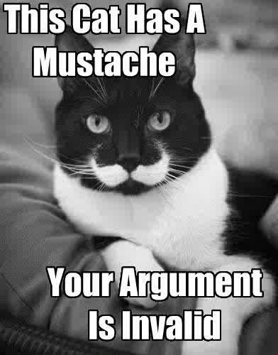 This Cat Has A Mustache - Your Argument Is Invalid