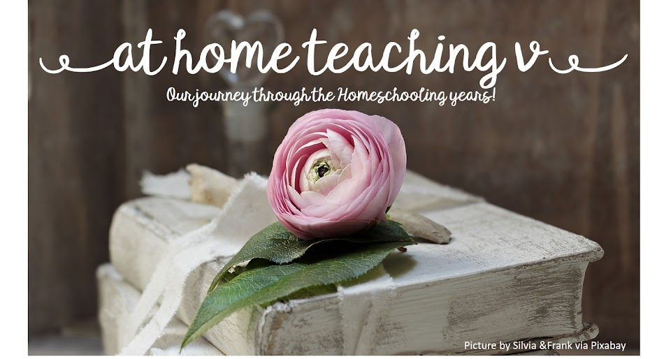 at home teaching V