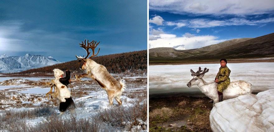 reindeer people Dukha people Hamid Sardar-Afkhami-4