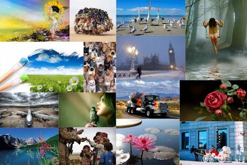 Las imágenes más bonitas de Internet IV (10 fotos)