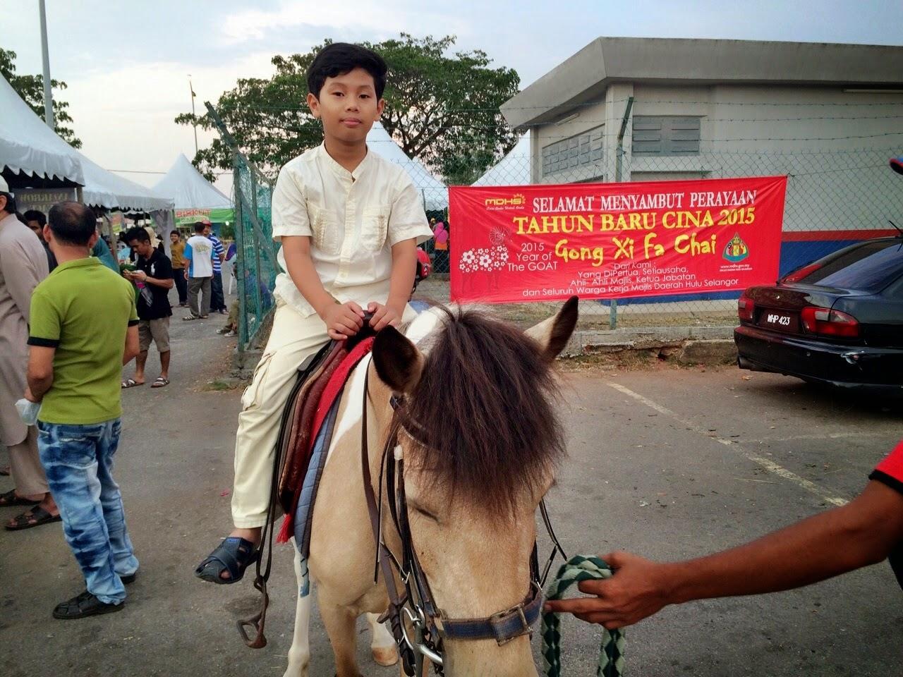 horse riding, naik kuda, bayaran menunggang kuda, kuda padi, kelab menunggang kuda