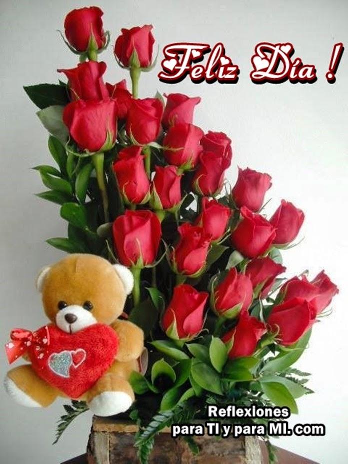 Imagenes De Rosas Rojas De Buenas Noches - descargar imagenes de rosas rojas de buenas noches