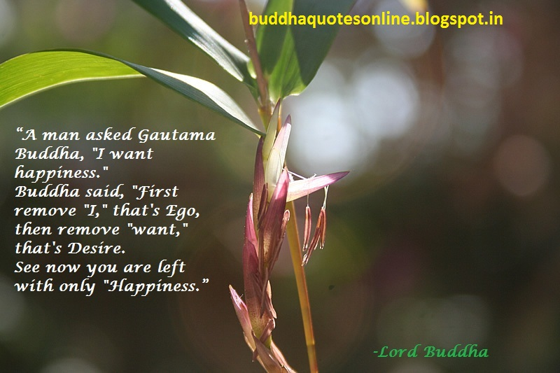 Buddha Quotes Online Top 10 On Motivation