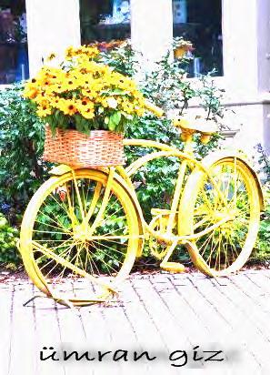 Bu da benim eski bisikletimden yaptığım yaptığım bahçemdeki
