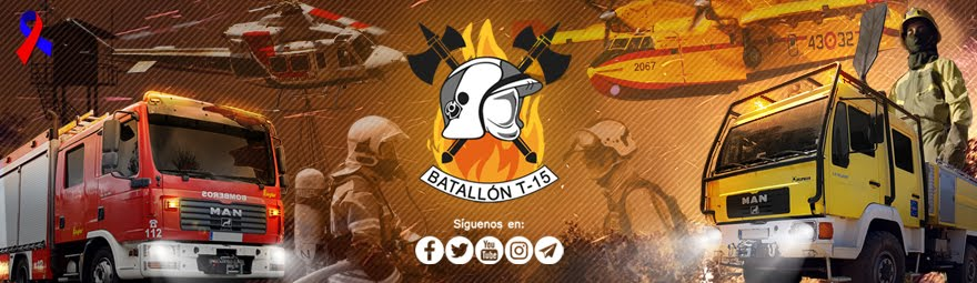 Batallón T-15