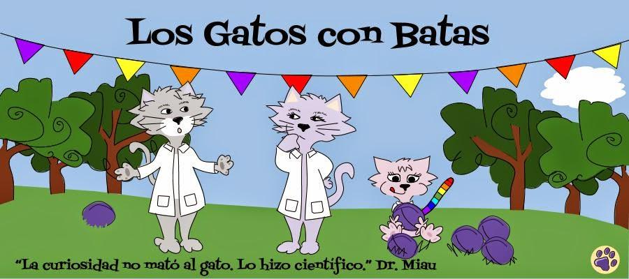Los Gatos con Batas