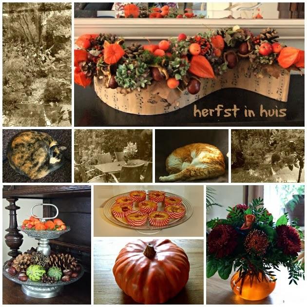 Especial at home herfst in huis en in de tuin for Huis in de tuin