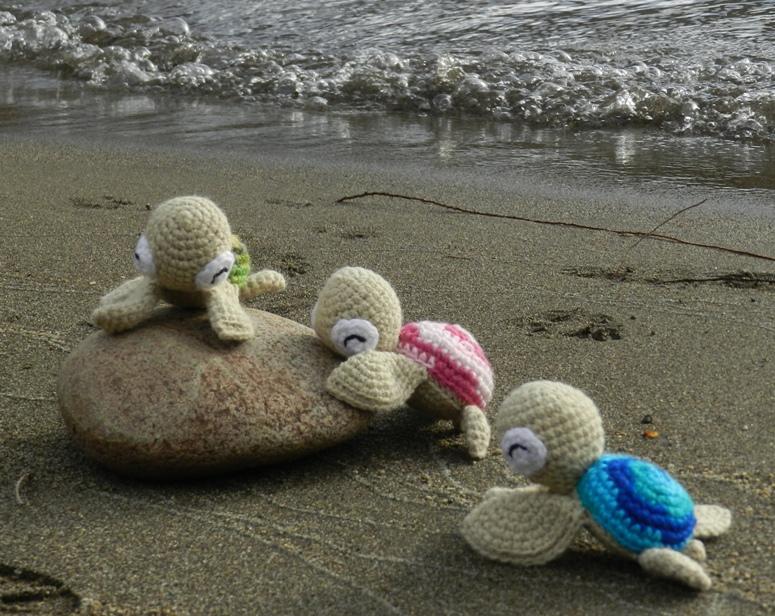 daxa rabalea: Tortugas marinas