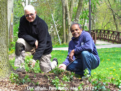 BRGSC chair, David Culham with head gardener, Para Kanp with new plants along the Waterfront Trail i Mississauga, ON
