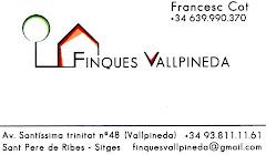 FINCAS VALLPINEDA