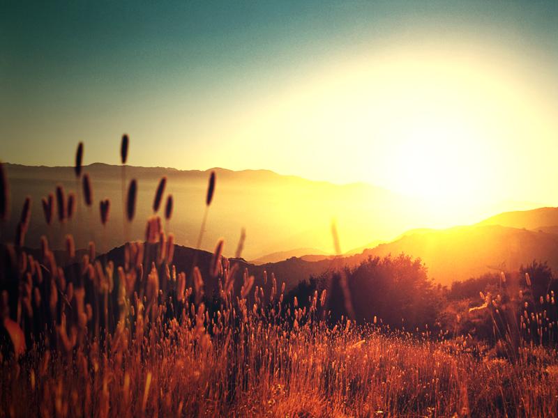 ucapan selamat pagi ucapan selamat pagi yang romantis dan spesial