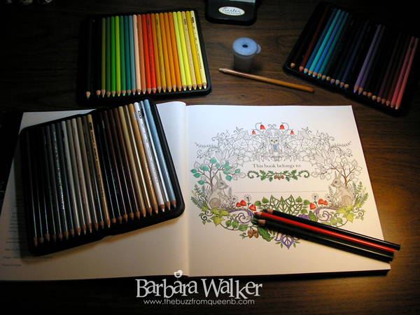 The Beauty of Calligraphy Coloring Book