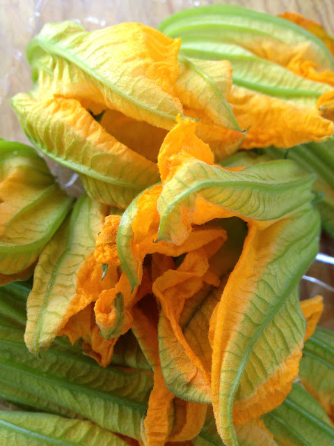 Recipe: Fried zucchini blossoms