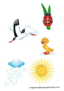 sol y lluvia de primavera  Animales en primavera para imprimir