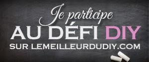http://www.lemeilleurdudiy.com/defi-diy-1-paques/