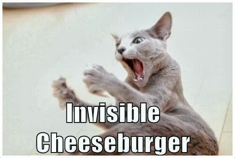 Cheesburger cat, The Invisible Cheesburger, Funny Cat,