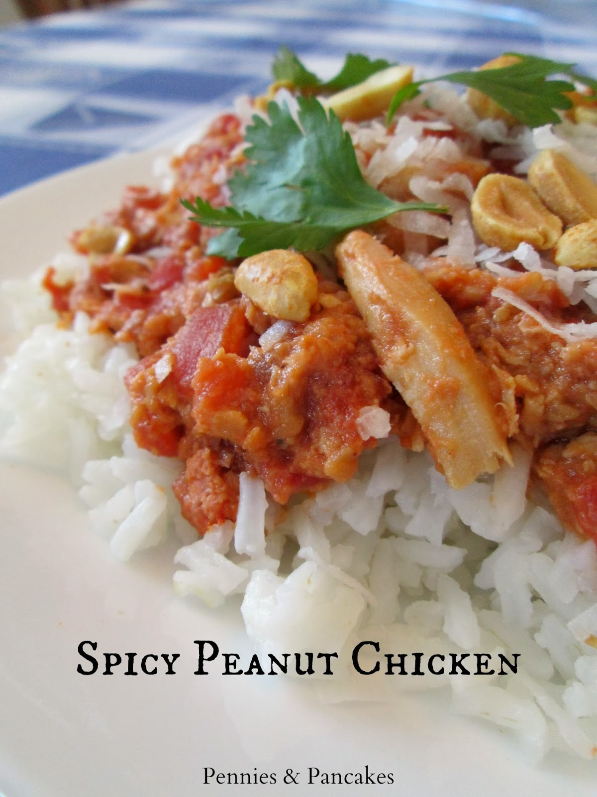 Pennies & Pancakes: {Slow Cooker} Spicy Peanut Chicken