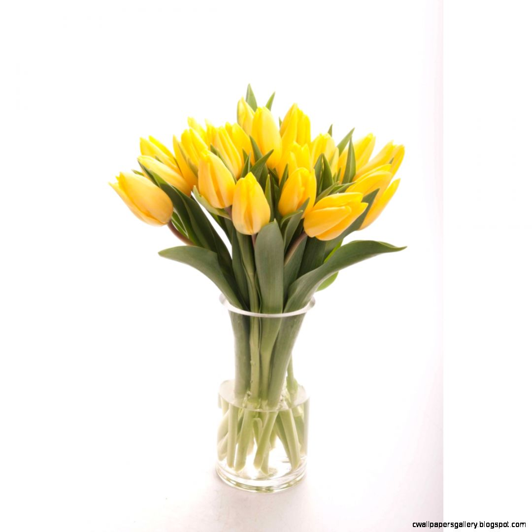 Yellow Tulip Bouquet  Flower Muse