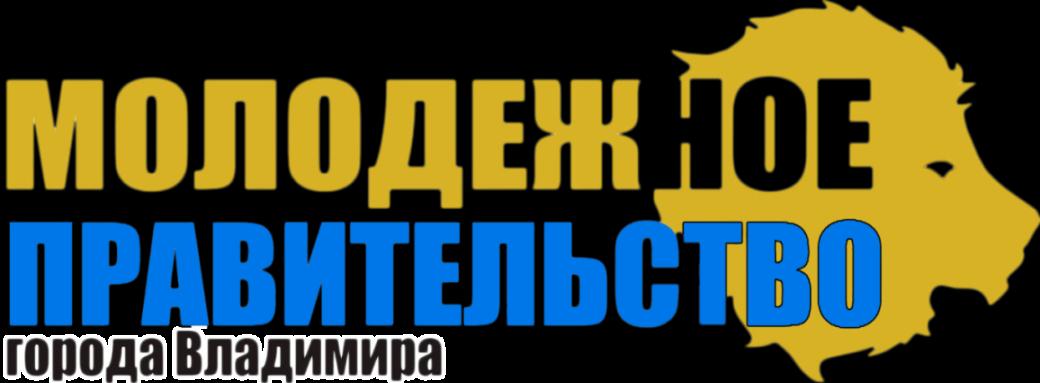 Молодежное правительство города Владимира