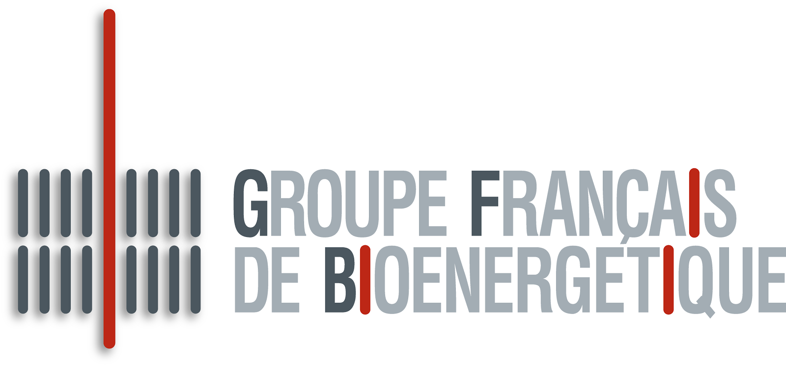 Groupe Français de Bioénergétique