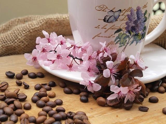 delicioso cafe viaggio espresso