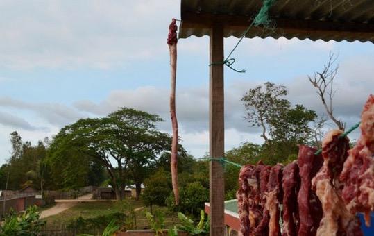 Senjata Pelik Orang Asli di Kepulauan Madagascar