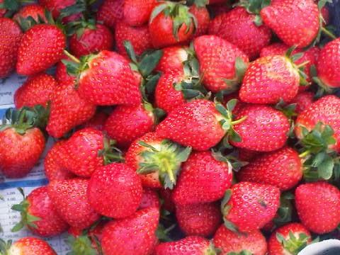 5 Manfaat Buah Strawberry Untuk Kesehatan