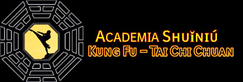 Academia de Kung Fu - Tai Chi Chuan - Qi Gong - Sanda - Full Contact