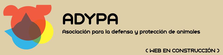 Asociación ADYPA