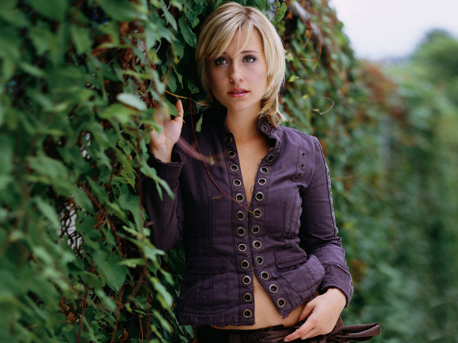 Allison Mack Hot Pictures Photo Gallery Amp Wallpapers