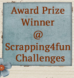 Scrapping4fun Challenges