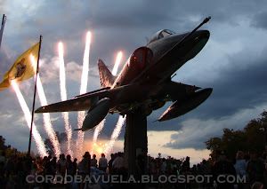 "IMAGEN DE LA SEMANA: ""HALCONES POR SIEMPRE""...!!!"