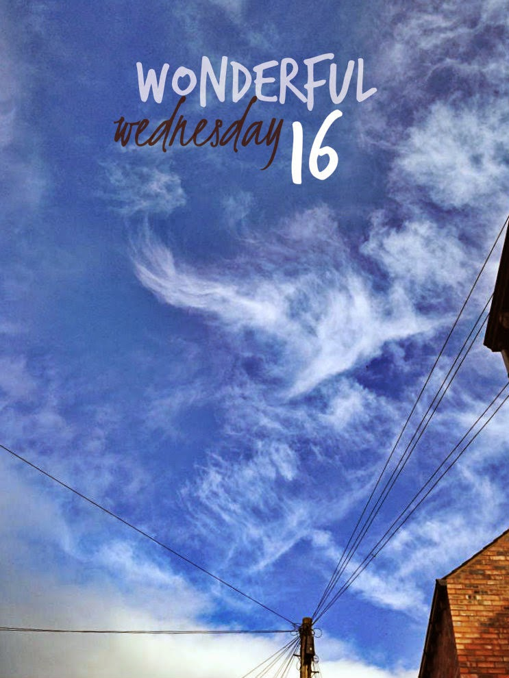 Wonderful Wednesday 16